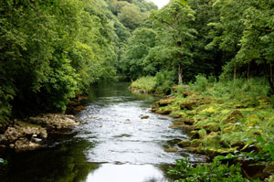 The River Wharfe meanders through good wlaking country in the yorkshire dales