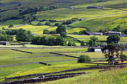 Yorkshire dales countryside Langstrothdale