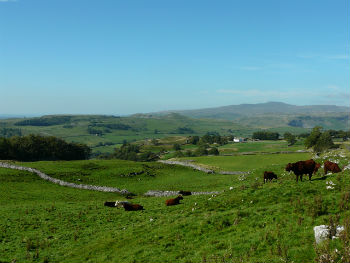 Stunning Dales countryside in Yorkshire Dales National Park