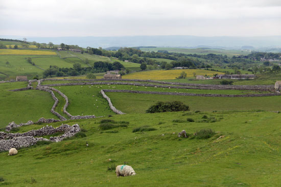 Stunning countryside around the village of Malham in the Yorkshire dales