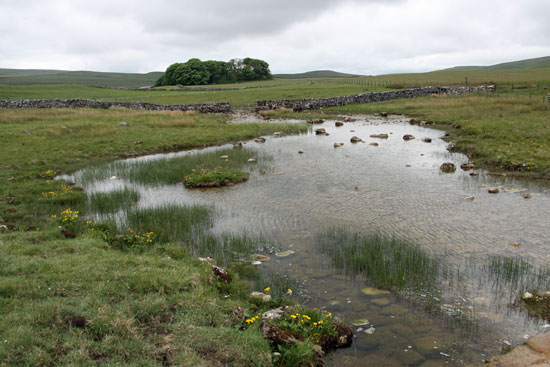 The source of the River Aire at Malham Tarn