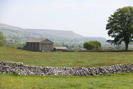 wensleydale countryside