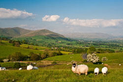 The lovely Yorkshire Dales for cottage holidays
